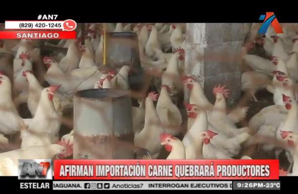 Afirman que importación de pollo quebrará a productores